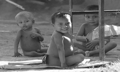 Zdjęcie WENEZUELA / amazonas / coshilowateri / ...