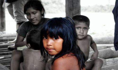 Zdjęcie WENEZUELA / Delta Orinoko / jeden z dopływów Orinoko / a to kto?