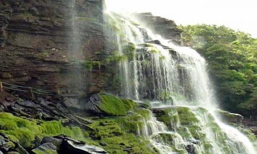 Zdjecie WENEZUELA / Canaima / laguna / wodospady Canaimy
