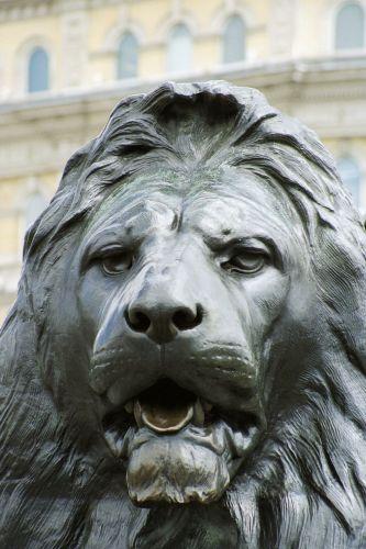 Zdjęcia: Londyn, Londyn, Lew z Trafalgaru, WIELKA BRYTANIA