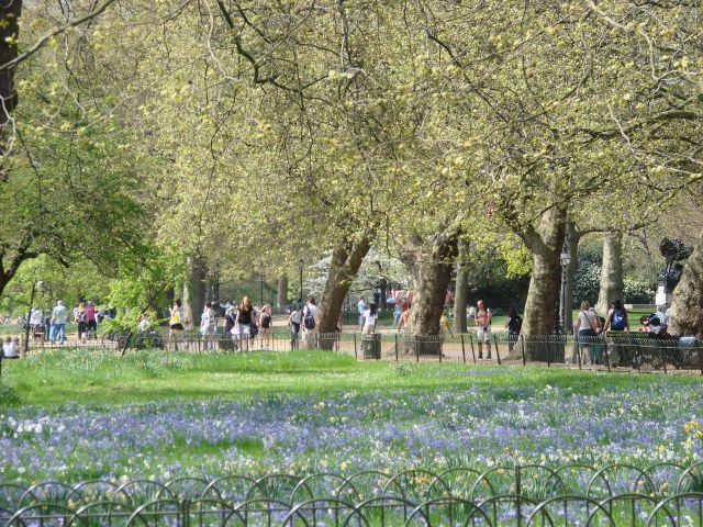 Zdjęcia: Londyn, Hyde Park, WIELKA BRYTANIA