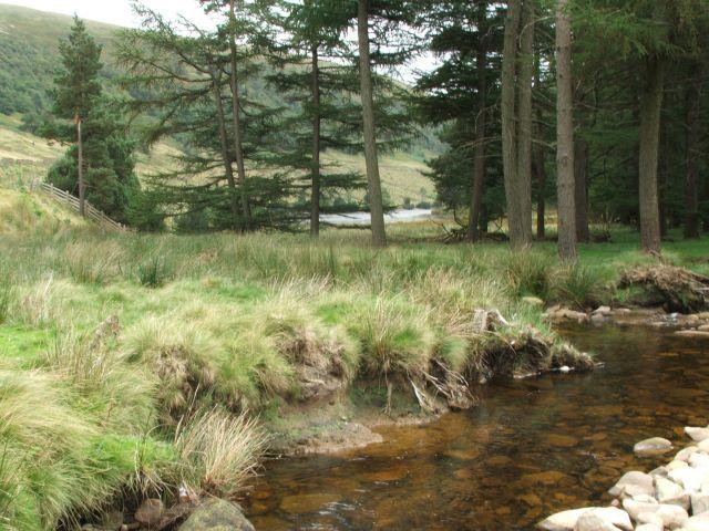 Zdjęcia: Derwent Reservoir, Peak District, Troche jak w domu (tesknie), WIELKA BRYTANIA