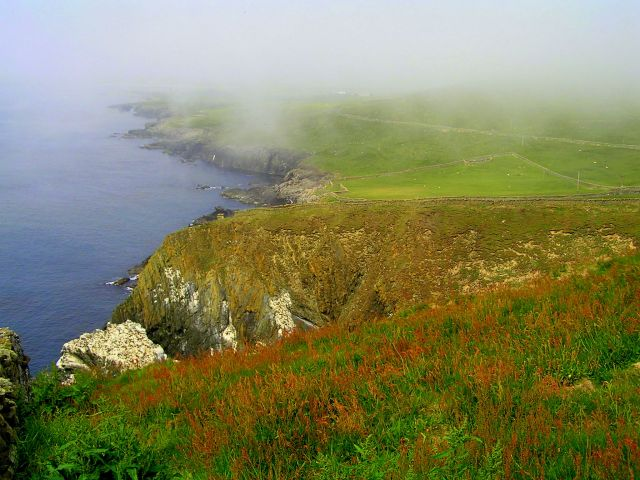 Zdjęcia: Szetlandy, Szkocja, Mgła na Sumburgh Head, WIELKA BRYTANIA