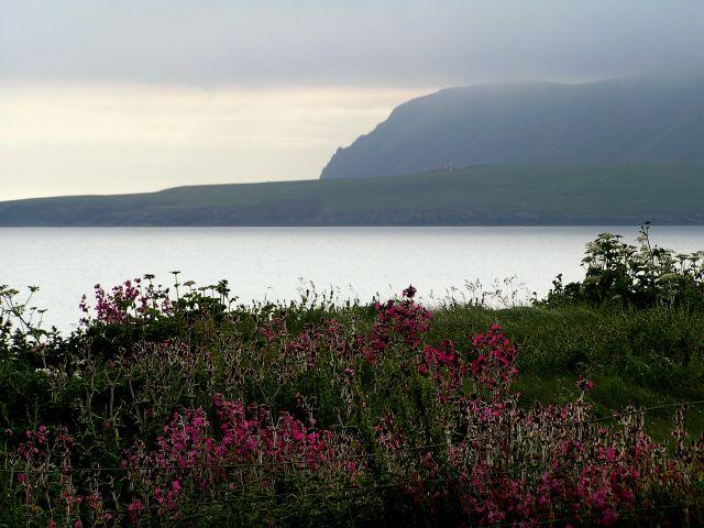 Zdj�cia: Szetlandy, Szkocja, Magiczny wiecz�r w okolicach Sumburgh Head, WIELKA BRYTANIA