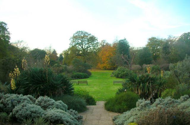 Zdjęcia: Londyn - Kew Gardens, w Kew Gardens, WIELKA BRYTANIA