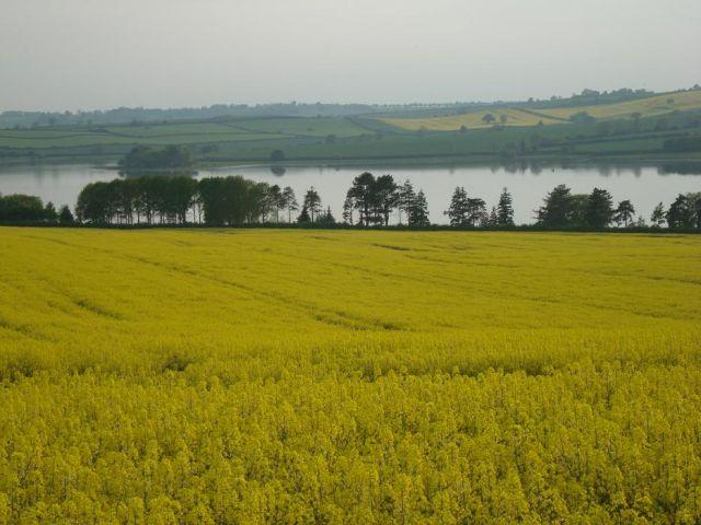 Zdjęcia: Luton, Jezioro za zoltym wzgorzem, WIELKA BRYTANIA