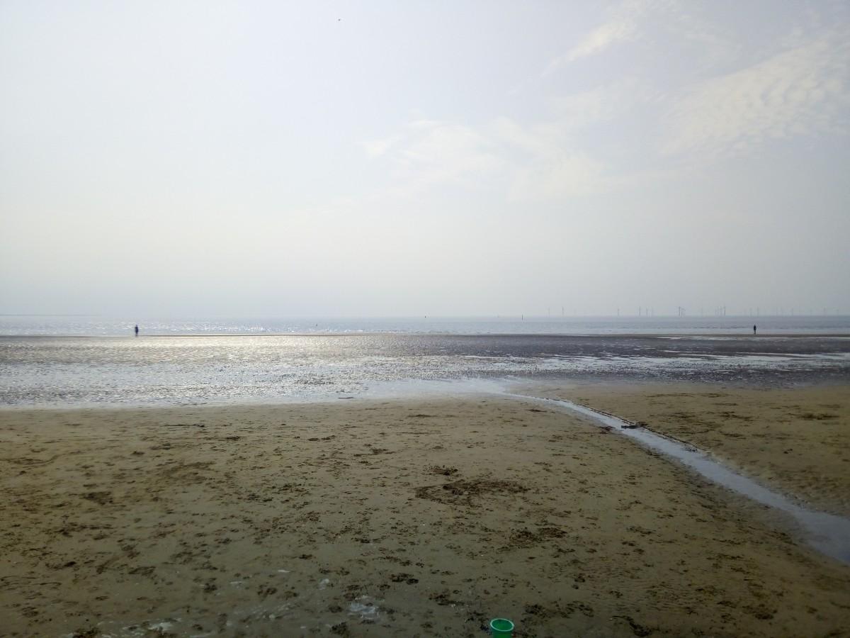 Zdjęcia: Liverpool, Mersyside, Crosby beach, WIELKA BRYTANIA