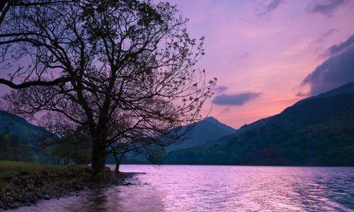Zdjecie WIELKA BRYTANIA / Polnocna Walia / Snownonia / Purple sunset