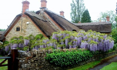 Zdjecie WIELKA BRYTANIA / Srodkowa Anglia / miasteczka i wsie Cotswold / Cotswold-angielska prowincja