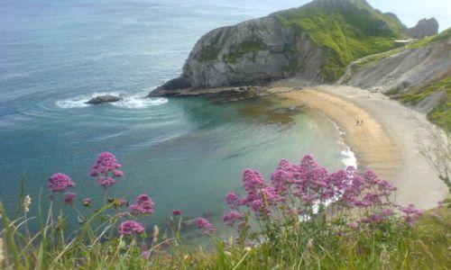Zdjęcie WIELKA BRYTANIA / Dorset / Lulworth / Dorset