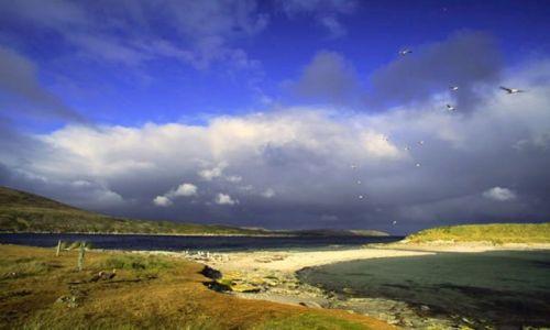 Zdjecie WIELKA BRYTANIA / Falklandy Malwiny /  Stanley i okolce / W odleglej krainie ..