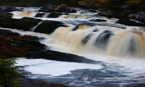 Zdjęcie WIELKA BRYTANIA / Szkocja / Rogie falls / rogie falls