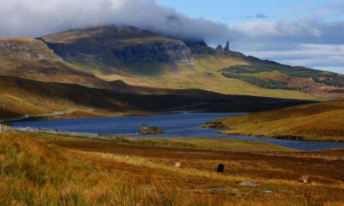 Zdjęcie WIELKA BRYTANIA / Szkocja / Isle of skye / Old Man of Storr