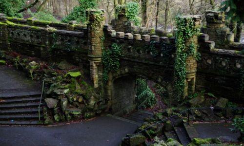 Zdjecie WIELKA BRYTANIA / West Yorkshire / Huddersfield / Tajemniczy Ogród