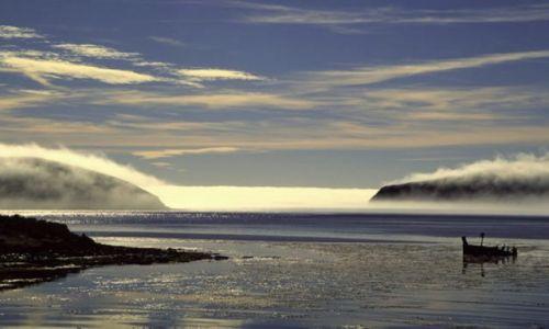Zdjecie WIELKA BRYTANIA / Falklandy - Malwiny / okolice Stanley / W poszukiwaniu wspomnien..