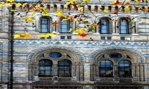 Zdjecie WIELKA BRYTANIA / Londyn / Londyn / jesiennie