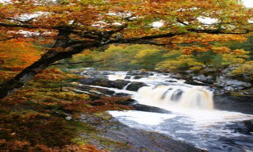 Zdjęcie WIELKA BRYTANIA / Scotland / Highlands / roggie falls 2