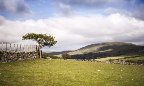 Zdjecie WIELKA BRYTANIA / Wales / Snowdonia / Snowdonia