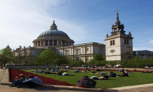 Zdjecie WIELKA BRYTANIA / Londyn / Katedra �w. Paw�a / Na murawie