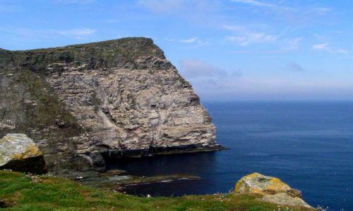 Zdjecie WIELKA BRYTANIA / Szkocja / Szetlandy / Wyspa Noss.