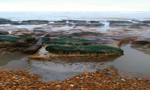 Zdjecie WIELKA BRYTANIA / East Sussex / Hastings / Cuda z odpływu