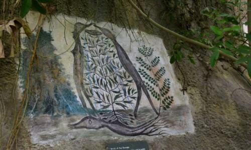 Zdjecie WIELKA BRYTANIA / Cornwall / Bodelva / wspolczesna skalne rysunki