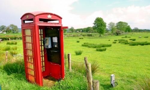 Zdjecie WIELKA BRYTANIA / Yorkshire / W polu / Zadzwoni? Nie zadzwoni.