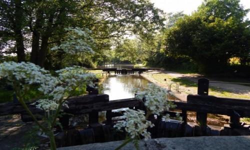 Zdjecie WIELKA BRYTANIA / Północna Anglia / Greater Manchester / Rochdale Canal