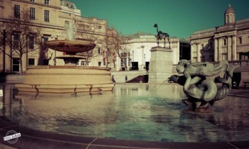 Zdjęcie WIELKA BRYTANIA / - / London / Trafalgar Square