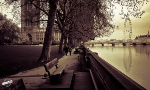 Zdjecie WIELKA BRYTANIA / - / Victoria Tower Gardens, London / Poranny Spacer