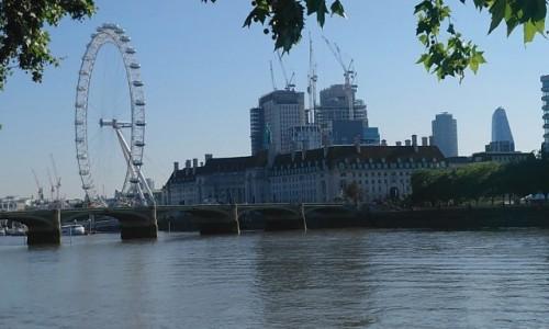 Zdjecie WIELKA BRYTANIA / City of London / Londyn / London Eye