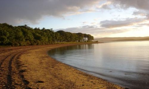 Zdjecie WIELKA BRYTANIA / Scotland,  Argyll / Loch Fyne / Loch Fyne