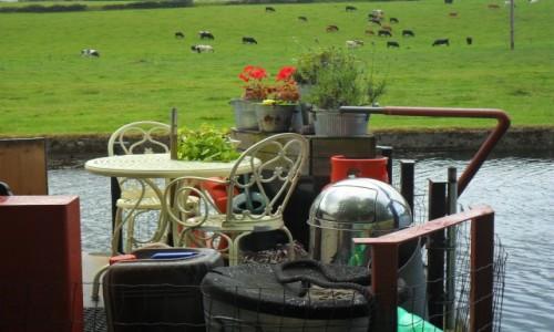 Zdjecie WIELKA BRYTANIA / West Yorkshier / Rodley Canal / Ogródek na łódce