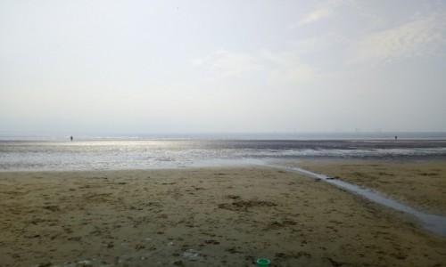 Zdjecie WIELKA BRYTANIA / Mersyside / Liverpool / Crosby beach