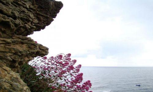 Zdjęcie WIELKA BRYTANIA / North  East   England / Scarborough / widok na Moze Polnocne