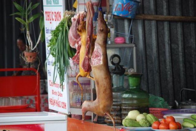 Zdjęcia: 50 km. od Hanoi, Pagoda Huong, Wietnamskie przysmaki, WIETNAM