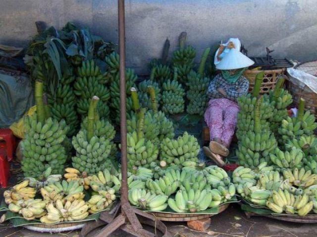 Zdjęcia: targ w Hue, w oczekiwaniu na klientów, WIETNAM