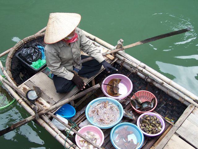 Zdjęcia: Wietnam, Wietnam 2008, WIETNAM