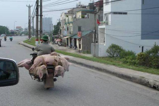 Zdj�cia: Hanoi, Azja, Hanoi w pa�dzierniku., WIETNAM