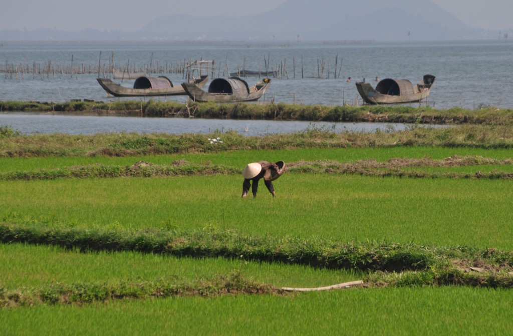 Zdjęcia: między Hue a Hoi An, środkowy Wietnam, W drodze z Hue do Hoi An, WIETNAM