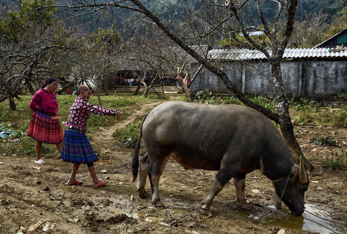 Zdjęcia: wioska Białych Tajów (okolica Mai Chau), Prowincja Hoà Bình, Wsi wesoła..., WIETNAM