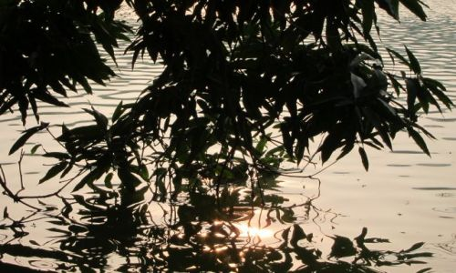 Zdjecie WIETNAM / - / Hanoi / poza zgielkiem wielkiego miasta