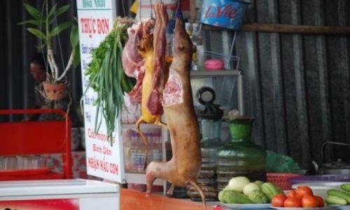Zdjęcie WIETNAM / Pagoda Huong / 50 km. od Hanoi / Wietnamskie przysmaki