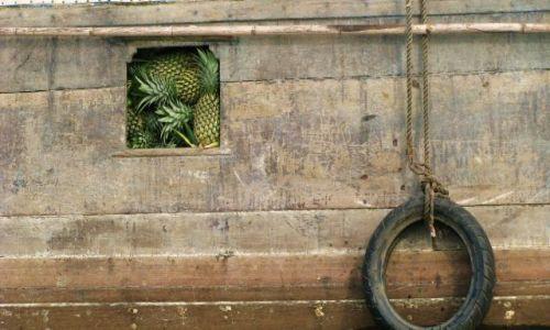 WIETNAM / Mekong / Can Tho / ananasy