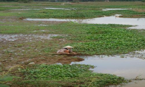 Zdjęcie WIETNAM / - / okolice Hoi An / pracujaca kobieta