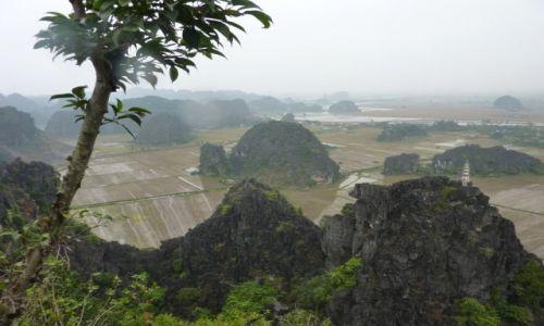Zdjęcie WIETNAM / Ninh Binh / pola ryżowe / suchy Ha Long