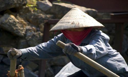 WIETNAM / Ninh Binh / Okolice Ninh Binh / Wioślarka