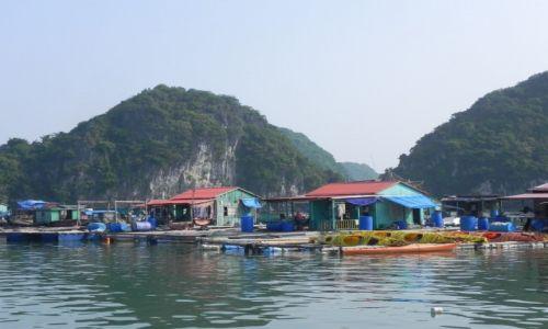 Zdjecie WIETNAM / halong bay / .. / życie w zatoce