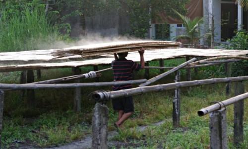 Zdjecie WIETNAM / Delta Mekongu / Delta Mekongu / Suszenie placków ryżowych na makaron