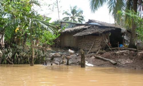 Zdjecie WIETNAM / Delta Mekongu / Wioska nad Mekongiem / Chatka nad Mekongiem
